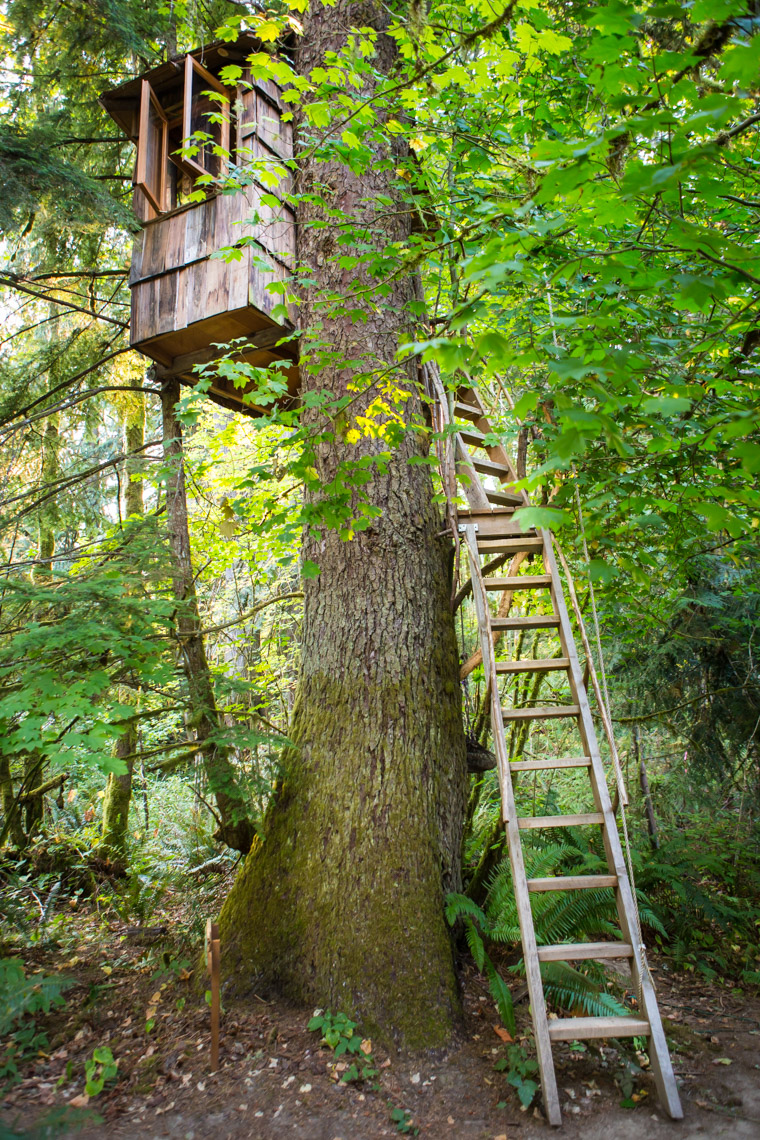A treehouse at Treehouse Point, Preston WA, USA.