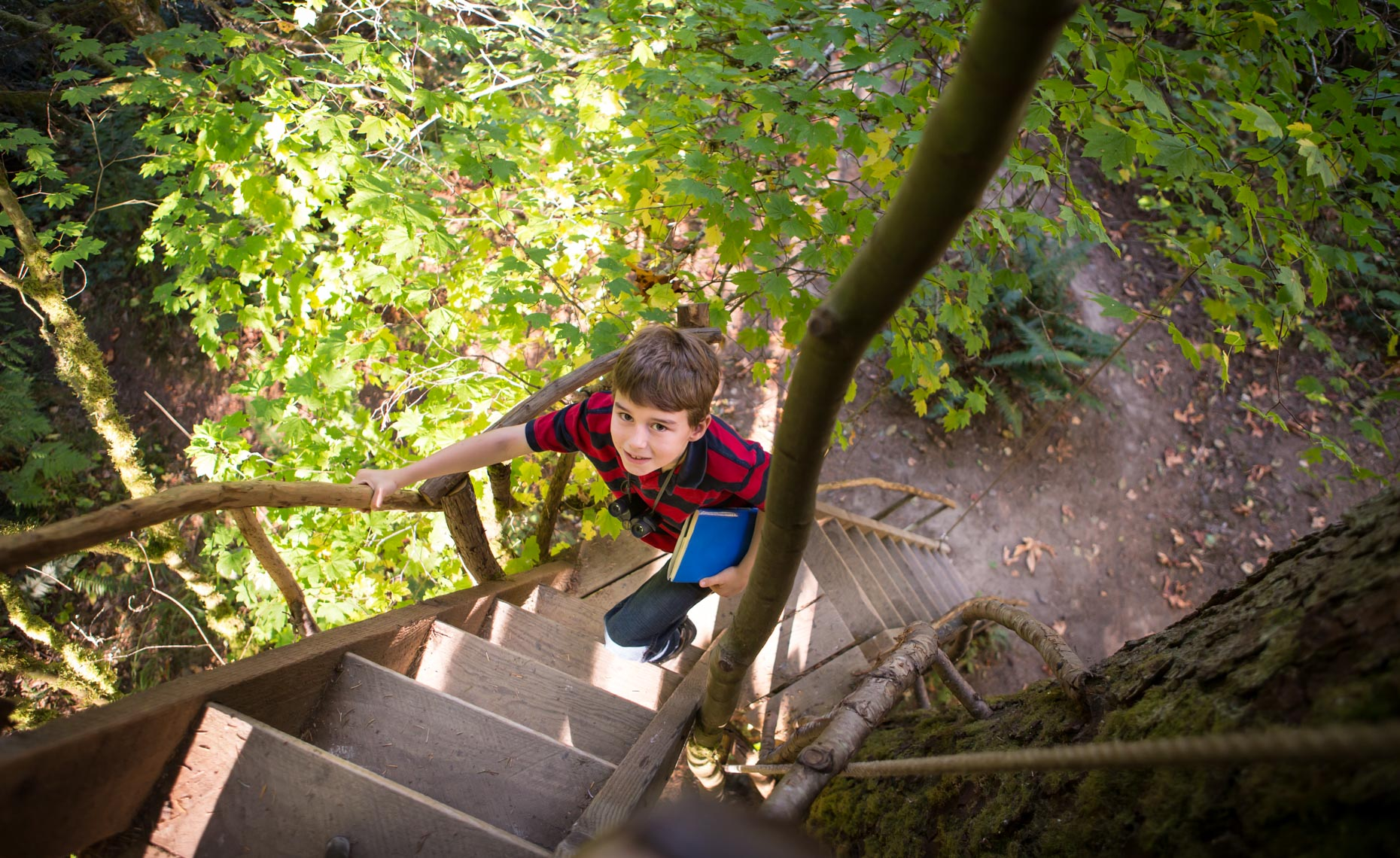 A young boy (8-12 years old) climbs the ladder of a treehouse at Treehouse Point, Preston WA, USA.