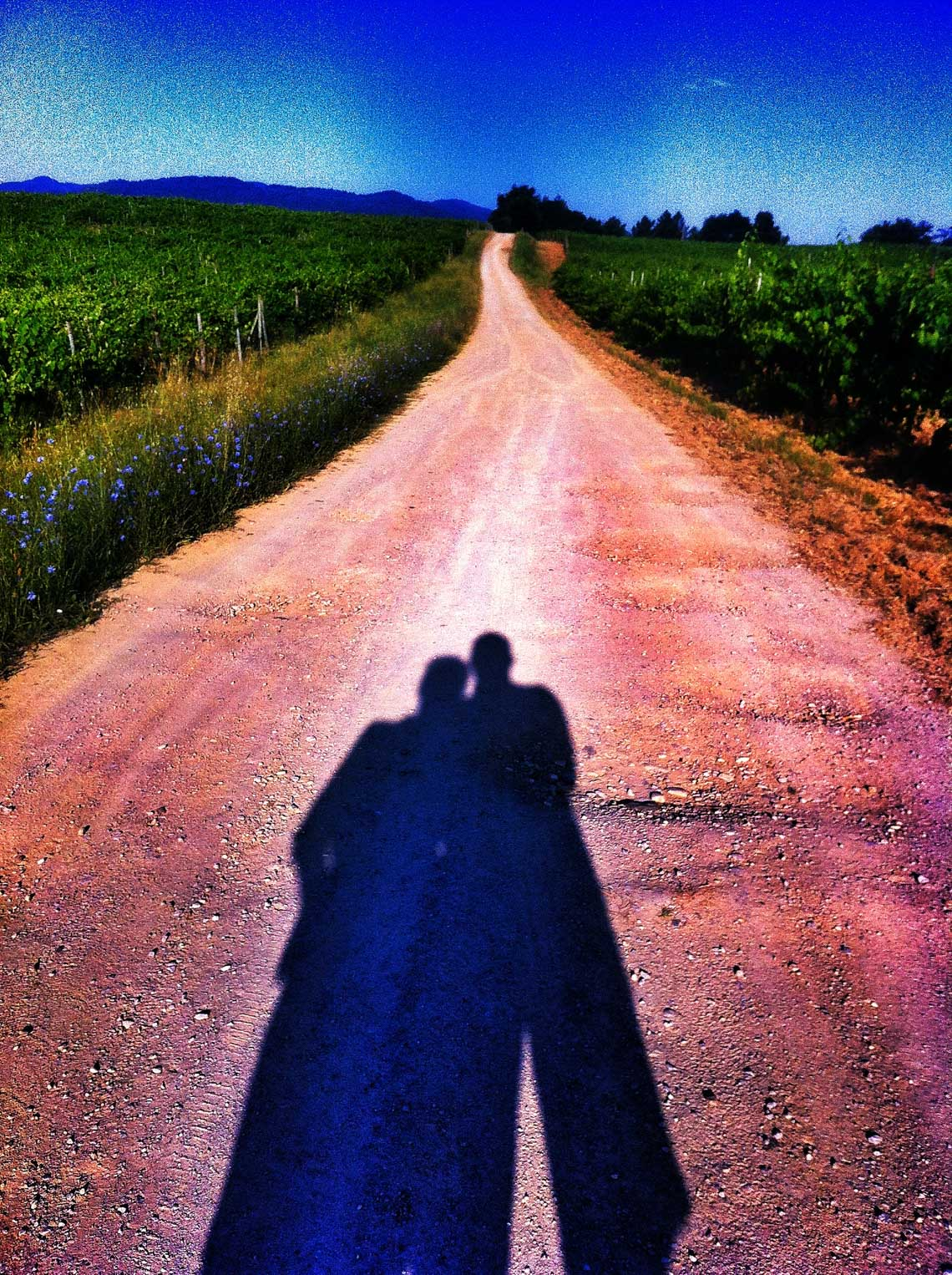 Shadow of a couple on a Tuscan Road